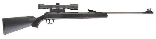 Umarex 2166025 RWS M34 Panther Combo .177 Air Gun Rifle