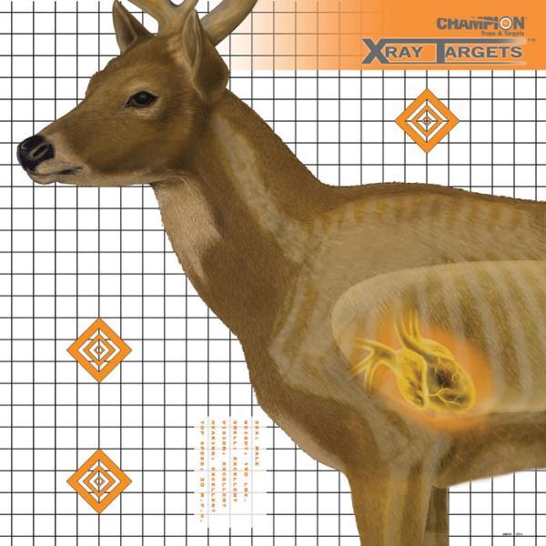 Champion Targets Deer X-RAY Target 6|PK
