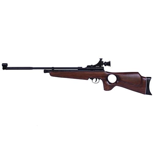 Beeman AR2078-22 SAG CO2 Air Rifle .22 Caliber with Thumbhole Stock