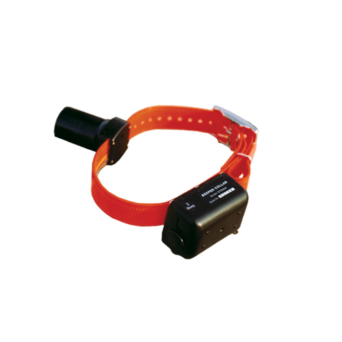 DT Systems Beeper Collar