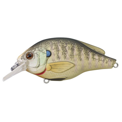 LiveTarget Lures BGS60S100 Sunfish Bluegill Squarebill Freshwater, 2 3|8 in. , #6 Hook, 3'-4' Depth, Natural|Matte