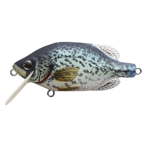 LiveTarget Lures CPF55S100 Crappie Crankbait Freshwater, 2 1|4 in. , #6 Hook, 3'-4' Depth, Natural|Matte