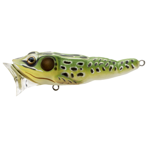 LIVETARGET Frog Popper - 2-1|2 - Green Yellow