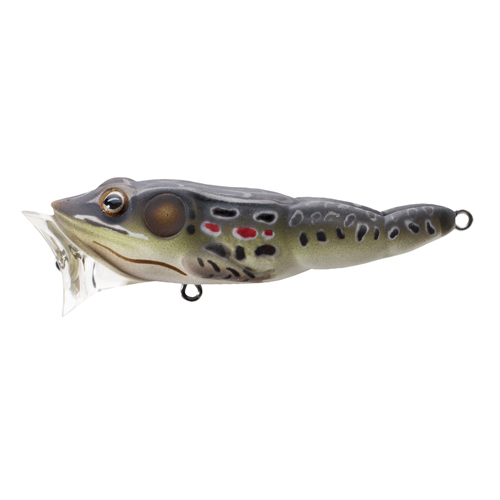 LiveTarget Lures FGP75T503 Frog Popper Freshwater, 3 in. , #4 Hook, Topwater Depth, Brown|Black