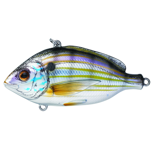 LIVETARGET Pinfish Lipless Rattlebait - Natural|Metallic - 2-1|2