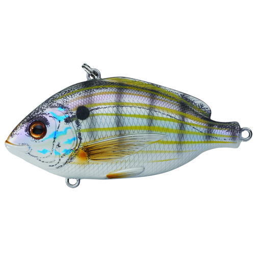 LiveTarget Lures PF75SK901 Pinfish Rattlebait Saltwater, 3 in. , #2 Hook, Variable Depth, Natural|Matte