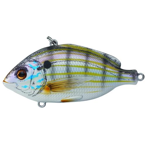 LiveTarget Lures PF95SK901 Pinfish Rattlebait Saltwater, 3 3 4 in. , #2 Hook, Variable Depth, Natural Matte