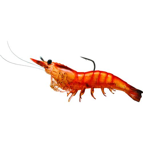 LIVETARGET Shrimp - 3'' - Pink Shrimp
