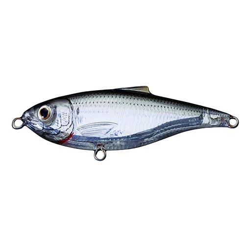 LiveTarget Lures SST75F948 Scaled Sardine Twitchbait Saltwater, 3 in. , #6 Hook, 0'-1' Depth, Ghost|Natural