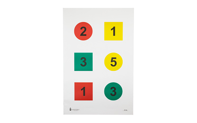 ACTION TARGET INC DT-4A-100 Discretionary Command Training 4-C Paper 23in. x 35in. Circle/Square Black/Green/Red/Yellow 100